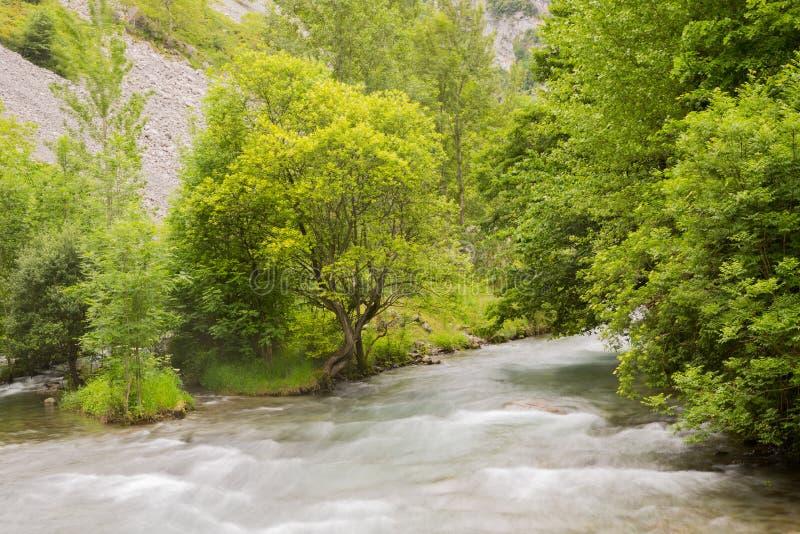 Καταρράκτης στον ποταμό προσοχών στοκ φωτογραφίες με δικαίωμα ελεύθερης χρήσης
