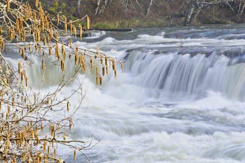 Καταρράκτης στον ποταμό Smith στοκ φωτογραφία