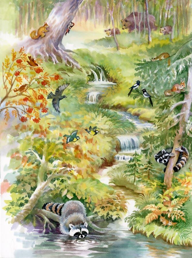 Καταρράκτης στο βαθύ δάσος διανυσματική απεικόνιση