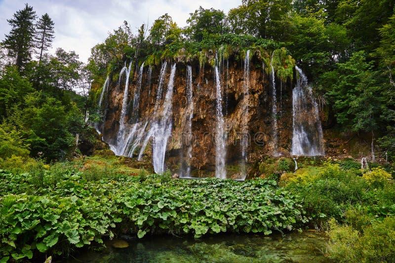 Καταρράκτης στο εθνικό πάρκο Plitvice, Κροατία στοκ φωτογραφία με δικαίωμα ελεύθερης χρήσης