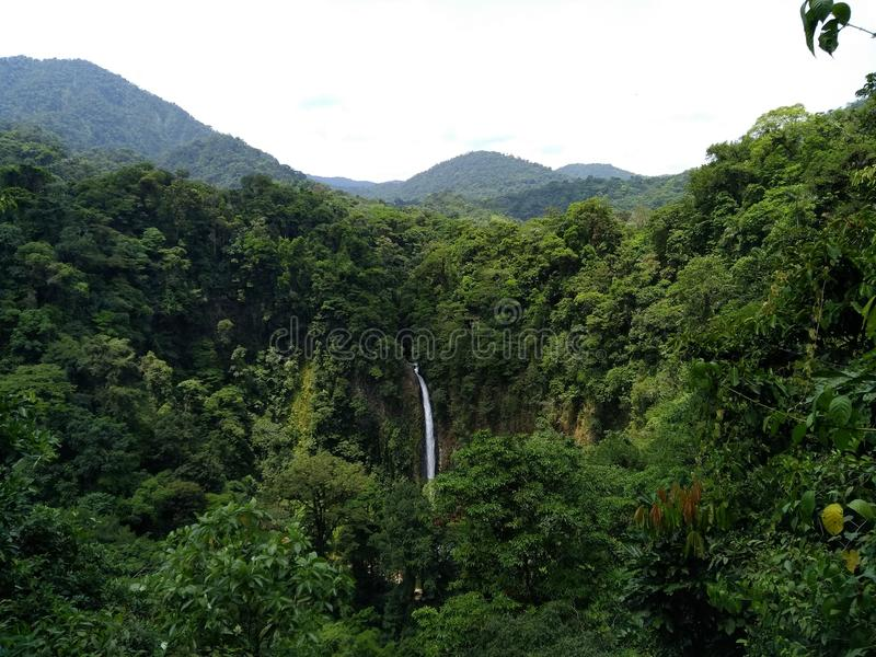 Καταρράκτης στο τροπικό δάσος στοκ εικόνες με δικαίωμα ελεύθερης χρήσης