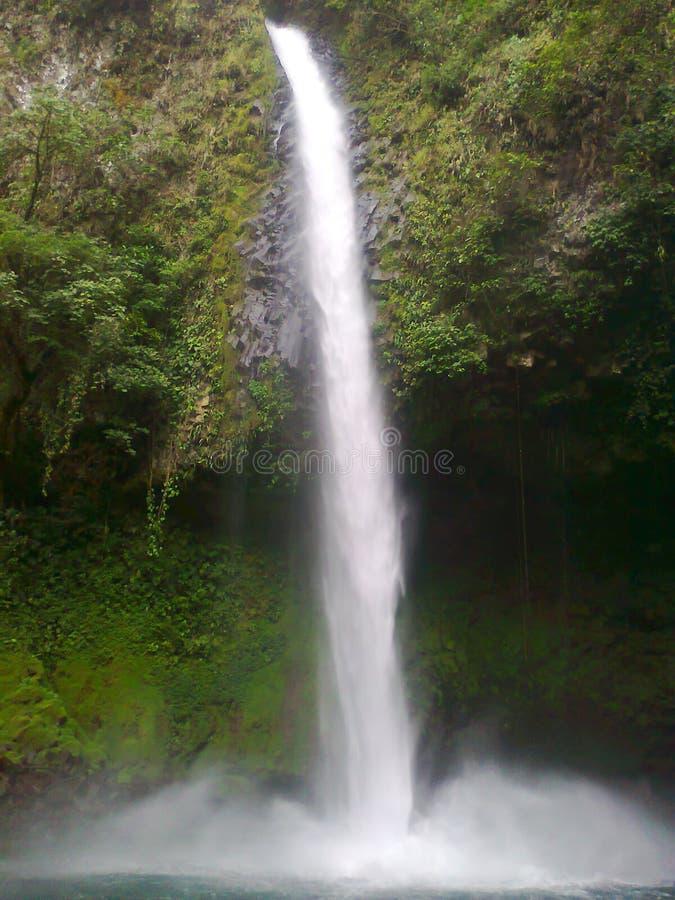 Καταρράκτης της Κόστα Ρίκα στοκ φωτογραφία με δικαίωμα ελεύθερης χρήσης