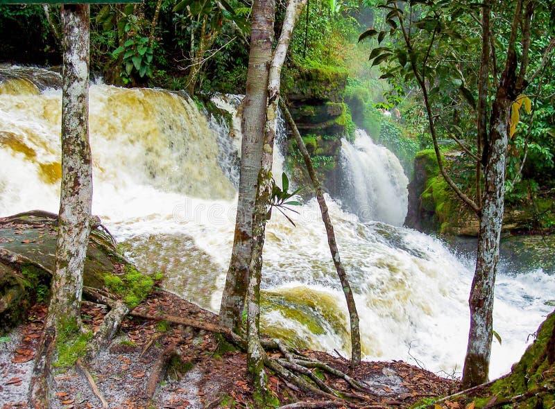 Καταρράκτης του Αμαζονίου στοκ εικόνα με δικαίωμα ελεύθερης χρήσης
