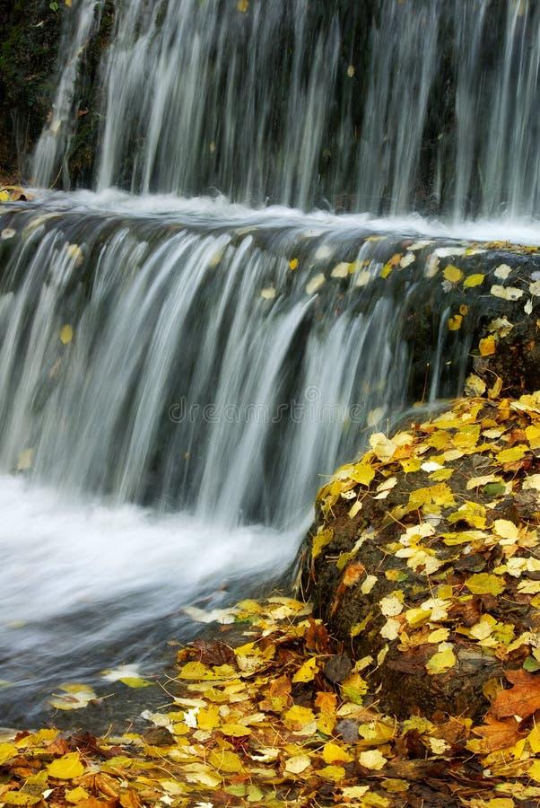 Download καταρράκτης φθινοπώρου στοκ εικόνες. εικόνα από χλωρίδα - 17052418