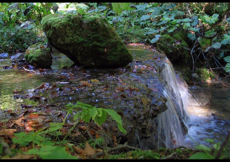 Download καταρράκτης στοκ εικόνες. εικόνα από ύδωρ, δέντρο, καταρράκτης - 96048