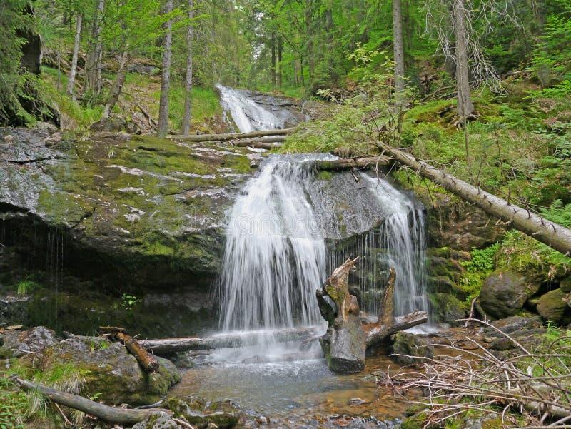 Καταρράκτης Riesloch, δασώδης ορεινός όγκος βράχου σε Bodenmais στοκ φωτογραφίες