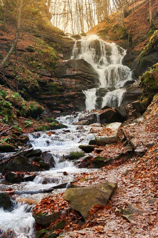 Καταρράκτης Shypot των Καρπάθιων βουνών το φθινόπωρο στοκ εικόνα με δικαίωμα ελεύθερης χρήσης