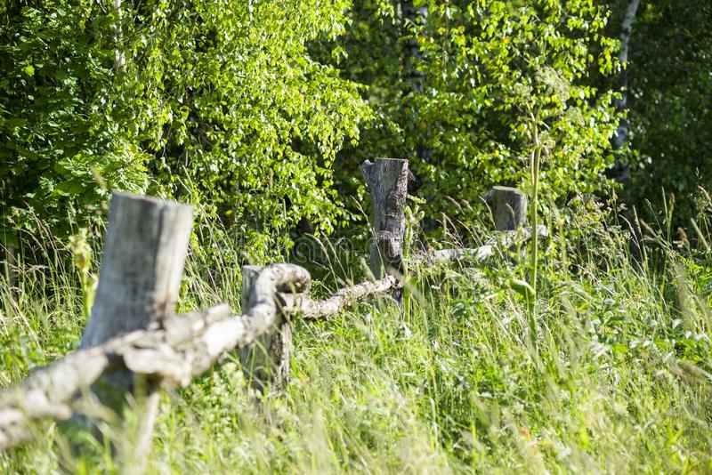Καταρρεσμένος παλαιός ξύλινος φράκτης στη χλόη στοκ εικόνες με δικαίωμα ελεύθερης χρήσης