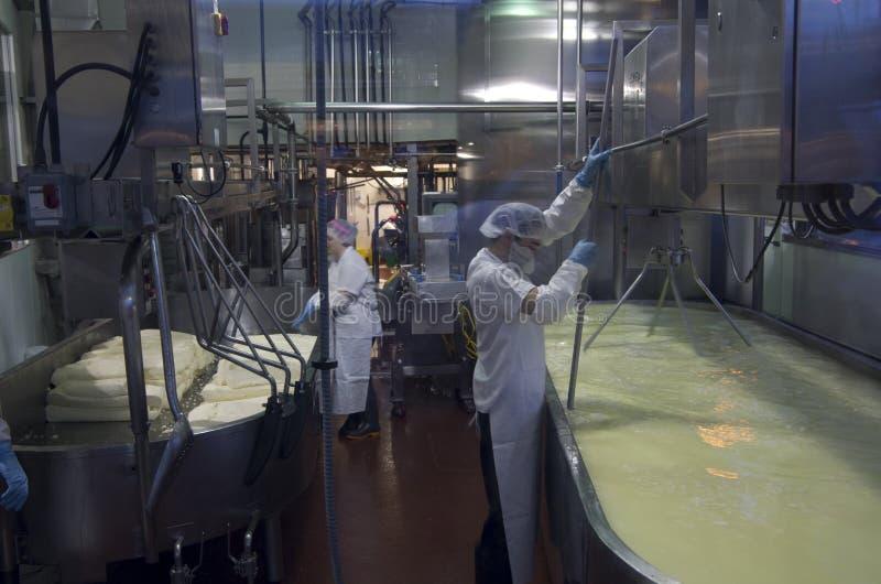 Κατασκευή του τυριού στοκ εικόνες με δικαίωμα ελεύθερης χρήσης