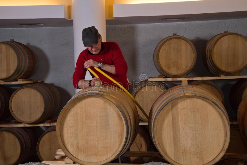Κατασκευαστής κρασιού κελαριών κρασιού στοκ φωτογραφία με δικαίωμα ελεύθερης χρήσης