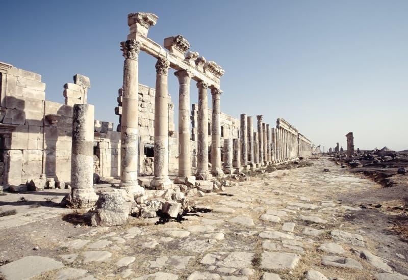 Καταστροφές Apamea, Συρία στοκ εικόνες