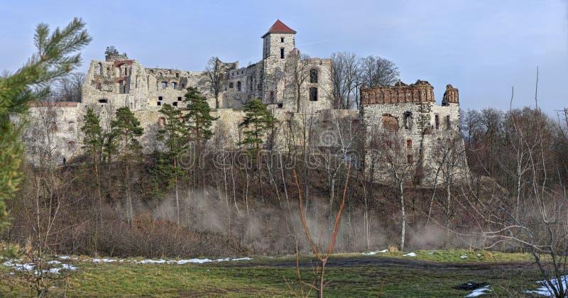 Καταστροφές Tenczyn του Castle στοκ εικόνες με δικαίωμα ελεύθερης χρήσης