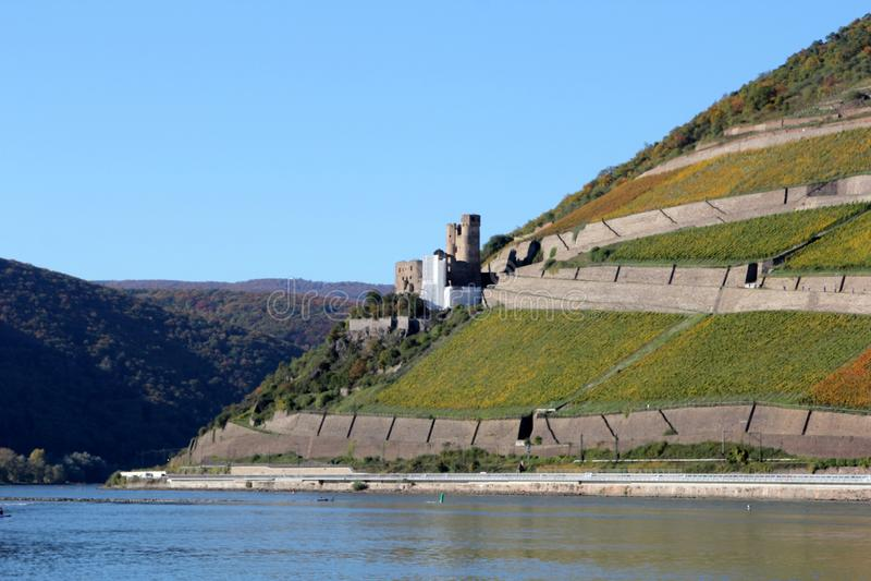 Καταστροφή του κάστρου Ehrenfels, Rheingau, Γερμανία στοκ φωτογραφία