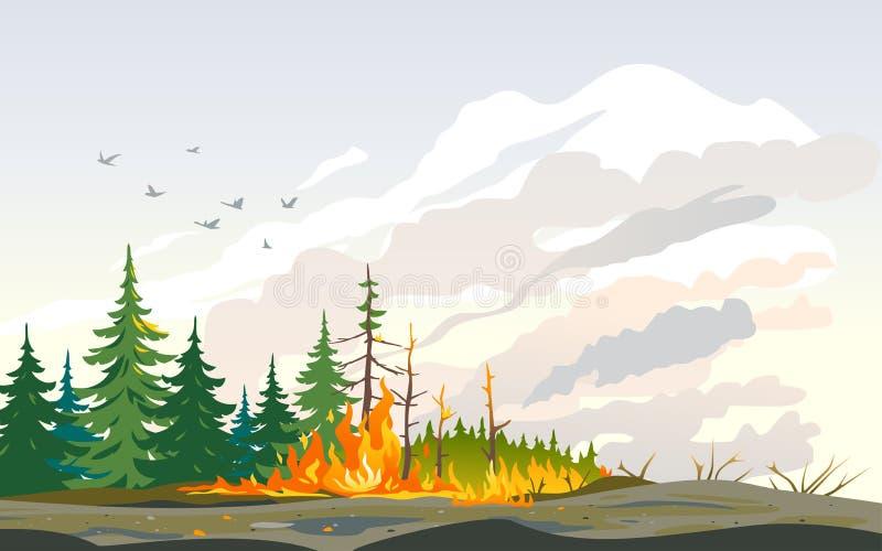 Καταστροφή φύσης δέντρων καψίματος πυρκαγιών διανυσματική απεικόνιση