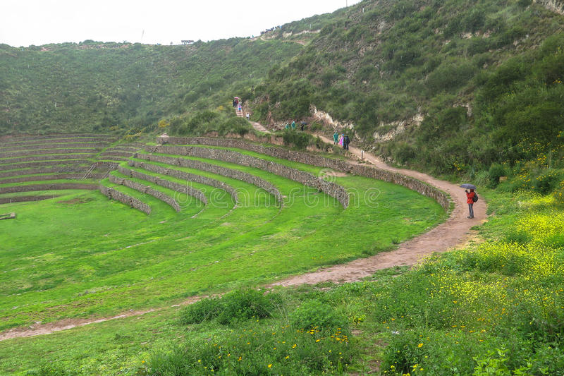 Καταστροφή Moray σε Cusco, Περού στοκ φωτογραφίες με δικαίωμα ελεύθερης χρήσης