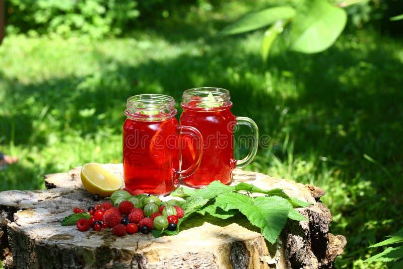 καταφερτζήδες Καλοκαίρι ποτών από τα μούρα μιγμάτων που διακοσμούνται με την πράσινη μέντα Compote μέσα σε ένα βάζο γυαλιού με έν στοκ φωτογραφίες