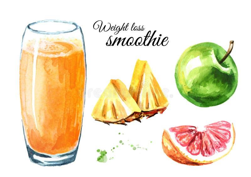 Καταφερτζής απώλειας βάρους με το σύνολο της Apple, γκρέιπφρουτ και ανανά Συρμένη χέρι απεικόνιση Watercolor, που απομονώνεται στ στοκ εικόνα με δικαίωμα ελεύθερης χρήσης