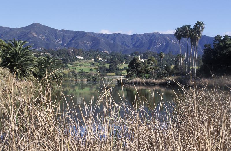 Καταφύγιο πουλιών της Andree Clark, Santa Barbara, Καλιφόρνια στοκ φωτογραφίες με δικαίωμα ελεύθερης χρήσης
