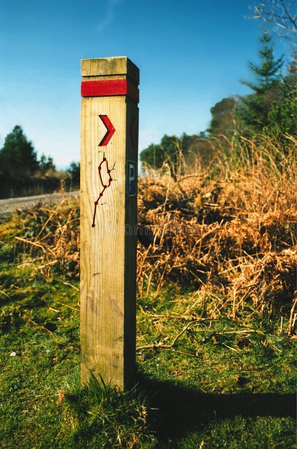 Download κατευθύνσεις στοκ εικόνα. εικόνα από ουαλία, περίπατος, δάσος - 92273
