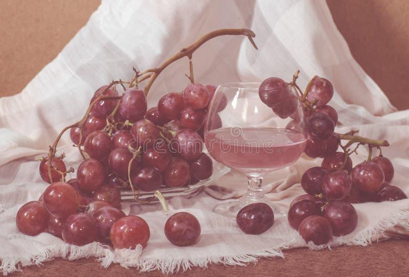 Κατεψυγμένος χυμός κόκκινων σταφυλιών στοκ φωτογραφία