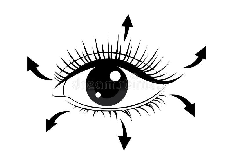Κατεύθυνση του βουρτσίσματος eyelash απεικόνιση αποθεμάτων
