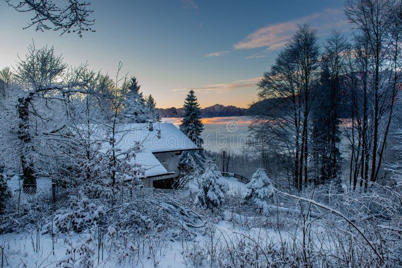 Κατοικήστε βυθισμένος στο χιόνι στοκ εικόνα με δικαίωμα ελεύθερης χρήσης