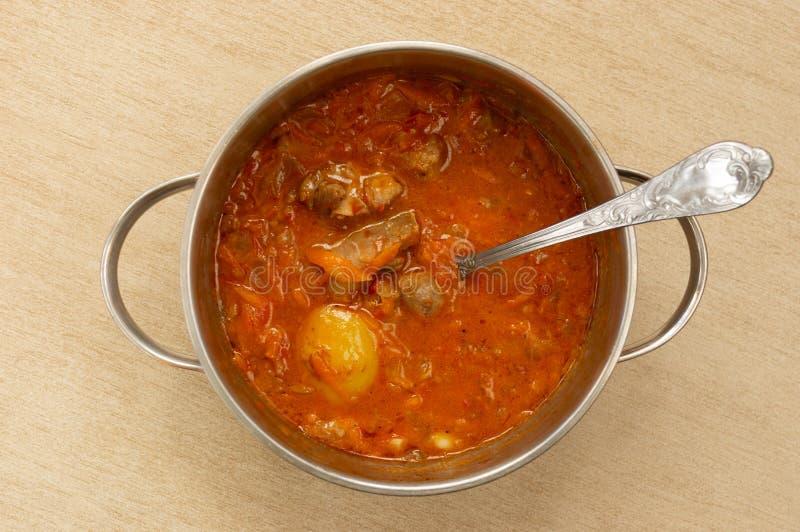 Κατσαρόλλα με το κρέας και τη σάλτσα στοκ φωτογραφία