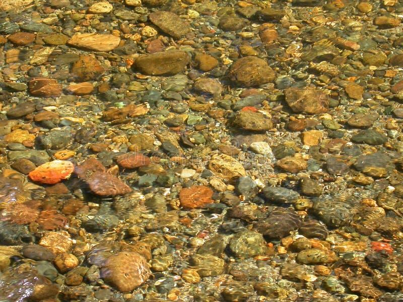 κατώτατος ποταμός δύσκο&lamb στοκ φωτογραφία