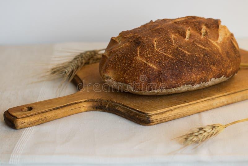 Κατ' οίκον γίνοντη φραντζόλα του ψωμιού φρέσκια ελιά πετρελαίου κουζινών τροφίμων έννοιας αρχιμαγείρων πέρα από την έκχυση της σα στοκ φωτογραφία με δικαίωμα ελεύθερης χρήσης