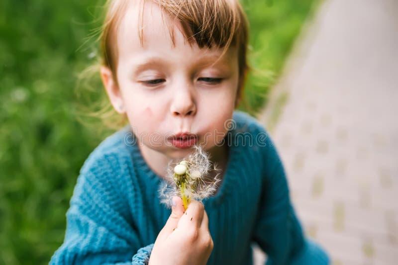 Καυκάσια χτυπήματα κοριτσάκι σε ένα λουλούδι πικραλίδων σε ένα πάρκο στοκ φωτογραφία