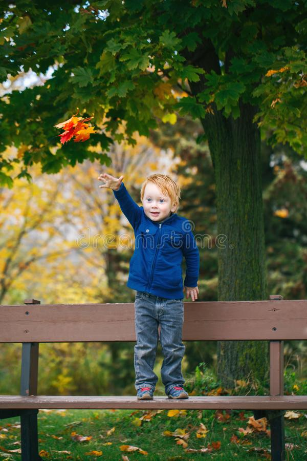 Καυκάσιο κοκκινομάλλες αγόρι με τα μπλε μάτια που κρατούν τα φύλλα πτώσης φθινοπώρου στο πάρκο στοκ φωτογραφία με δικαίωμα ελεύθερης χρήσης