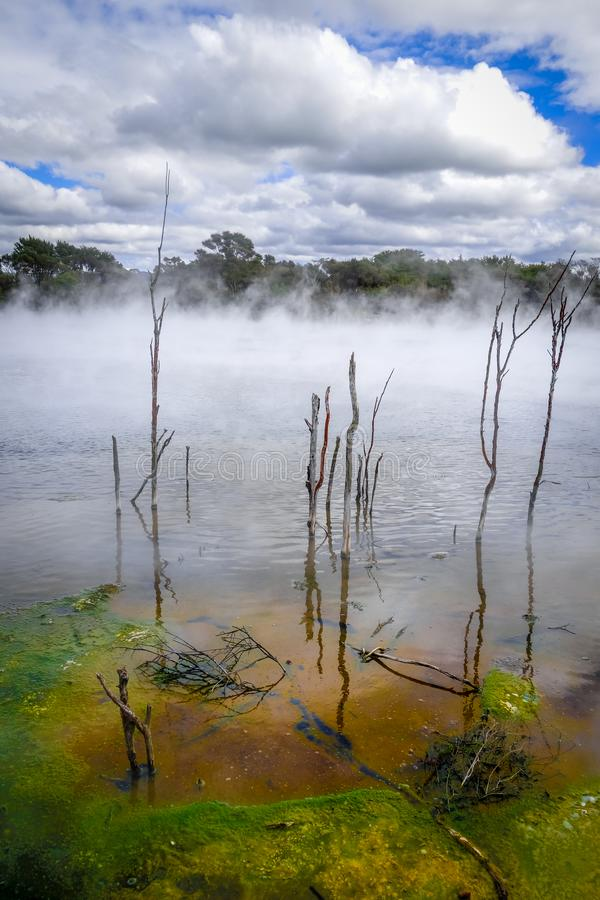 Καυτή λίμνη ελατηρίων σε Rotorua, Νέα Ζηλανδία στοκ φωτογραφίες