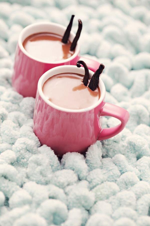 Καυτή σοκολάτα με τη βανίλια στοκ εικόνες