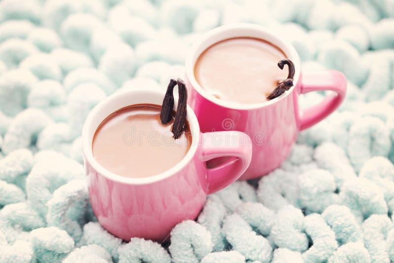 Καυτή σοκολάτα με τη βανίλια στοκ φωτογραφίες με δικαίωμα ελεύθερης χρήσης