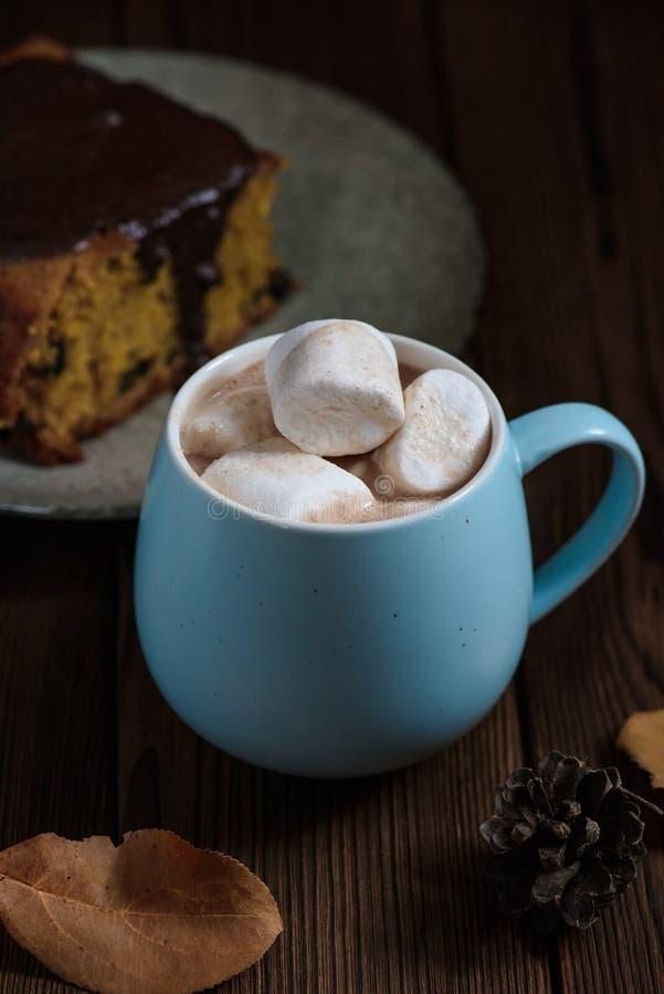 Καυτή σοκολάτα με marshmallows σε ένα κεραμικό φλυτζάνι στοκ φωτογραφίες