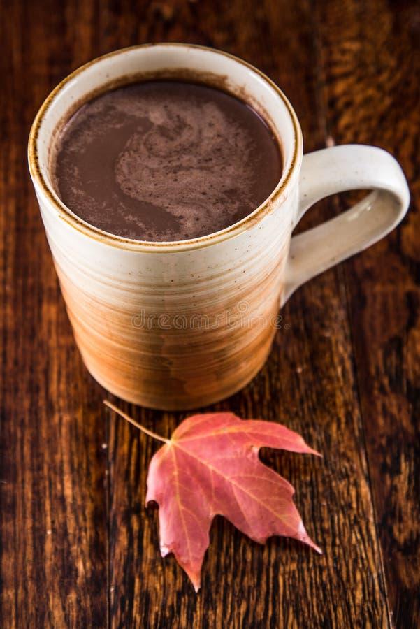 Καυτή σοκολάτα το φθινόπωρο στοκ εικόνες
