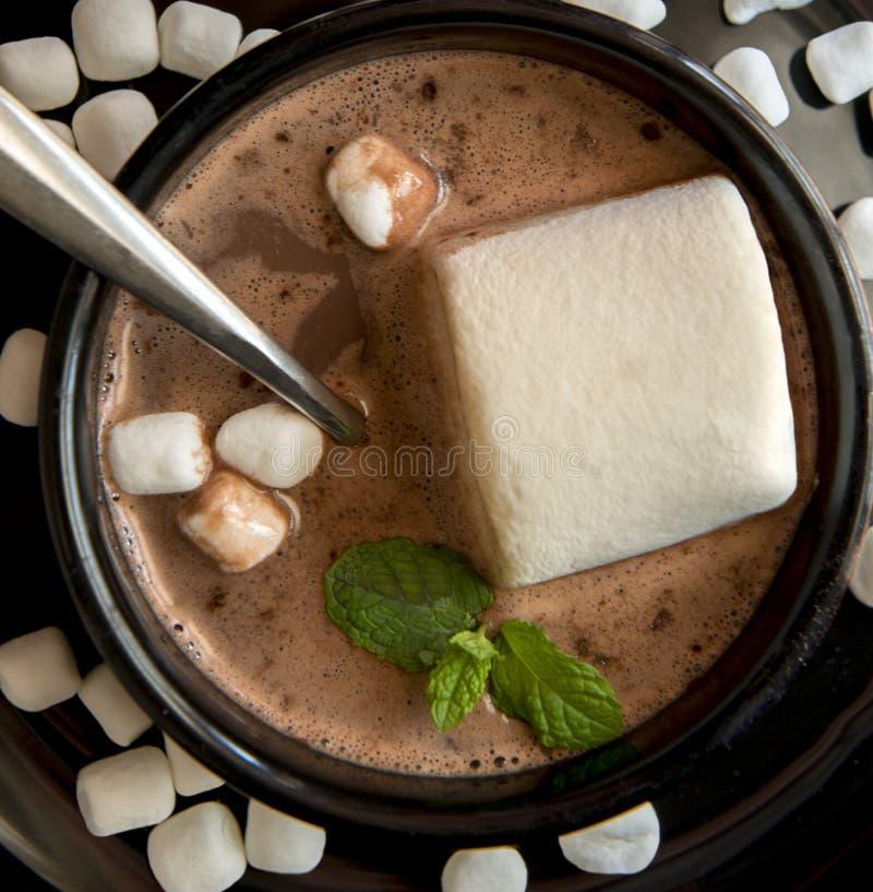 Καυτή σούπα σοκολάτας με γιγαντιαία και μίνι marshmallows στοκ εικόνα