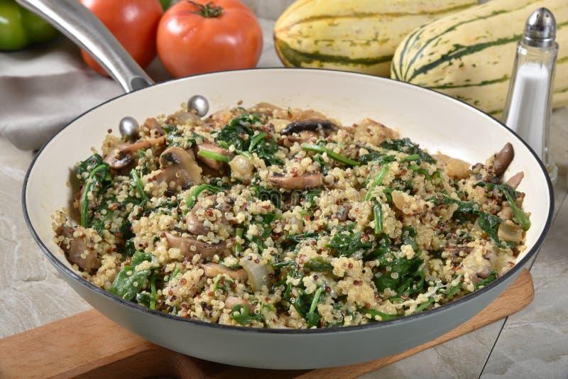 Καυτή quinoa σπανακιού σαλάτα στοκ εικόνες με δικαίωμα ελεύθερης χρήσης