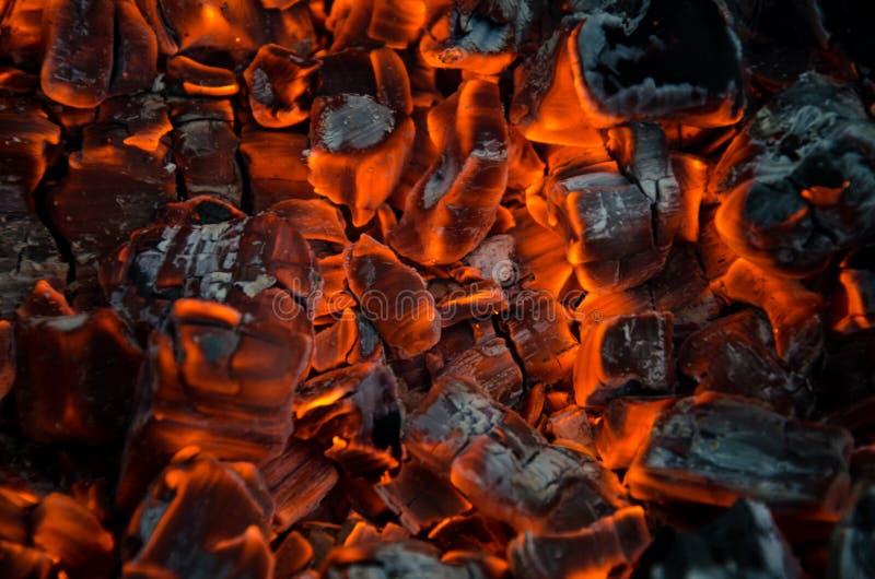 Καυτοί άνθρακες στοκ εικόνα