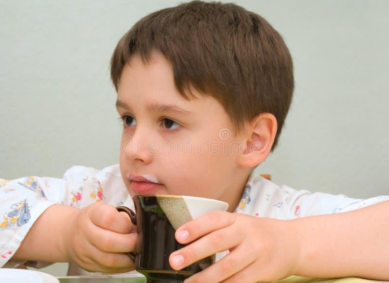 καυτό γάλα στοκ εικόνες
