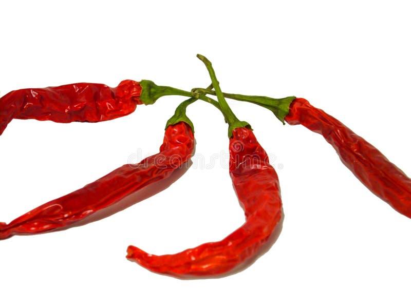καυτό κόκκινο πιπεριών τσίλι στοκ φωτογραφίες