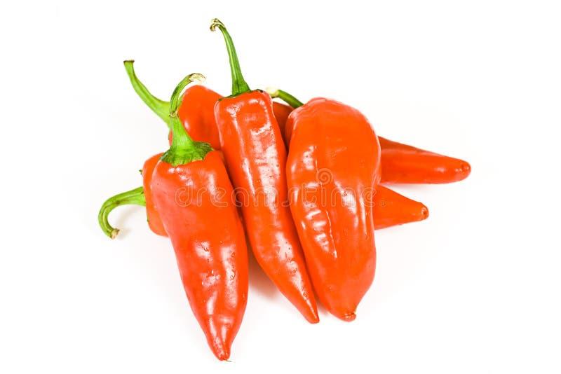 καυτό κόκκινο πιπεριών jalapeno στοκ φωτογραφίες