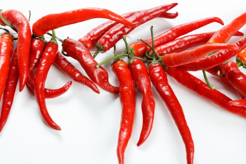 καυτό κόκκινο τσίλι στοκ εικόνα με δικαίωμα ελεύθερης χρήσης