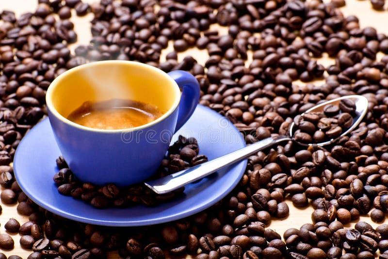 Καυτό φλυτζάνι καφέ στοκ φωτογραφίες
