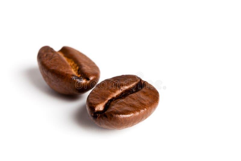 καφές δύο φασολιών στοκ φωτογραφία με δικαίωμα ελεύθερης χρήσης
