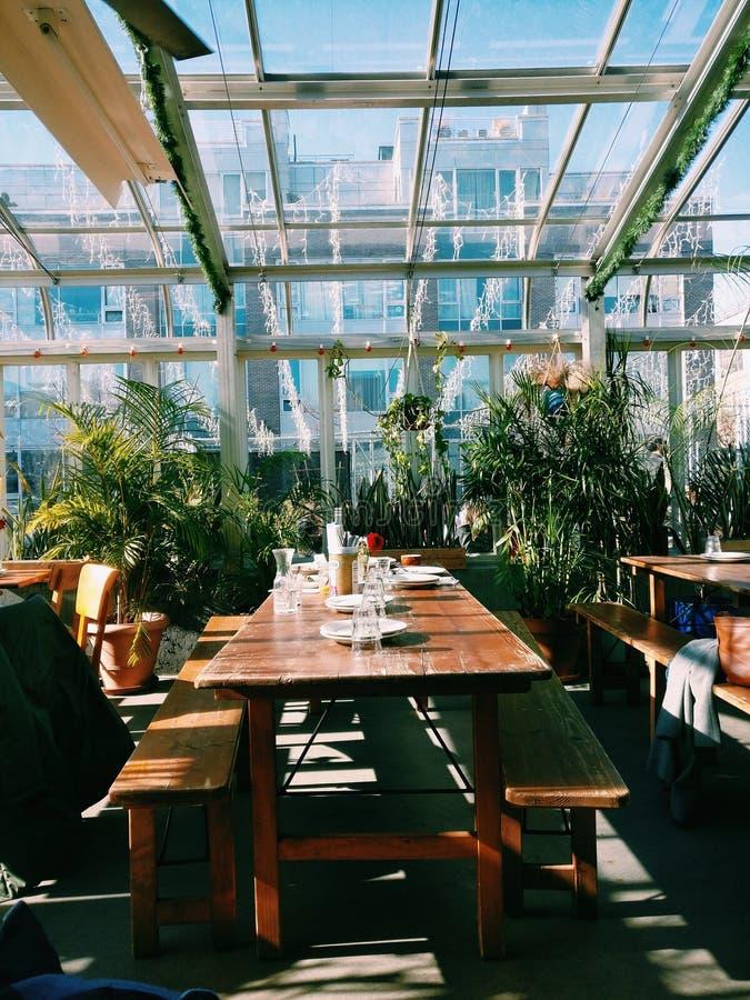 Καφές κήπων στοκ φωτογραφία με δικαίωμα ελεύθερης χρήσης