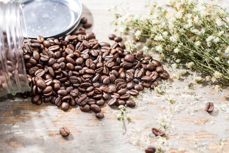 Καφές και λουλούδι στοκ φωτογραφίες με δικαίωμα ελεύθερης χρήσης