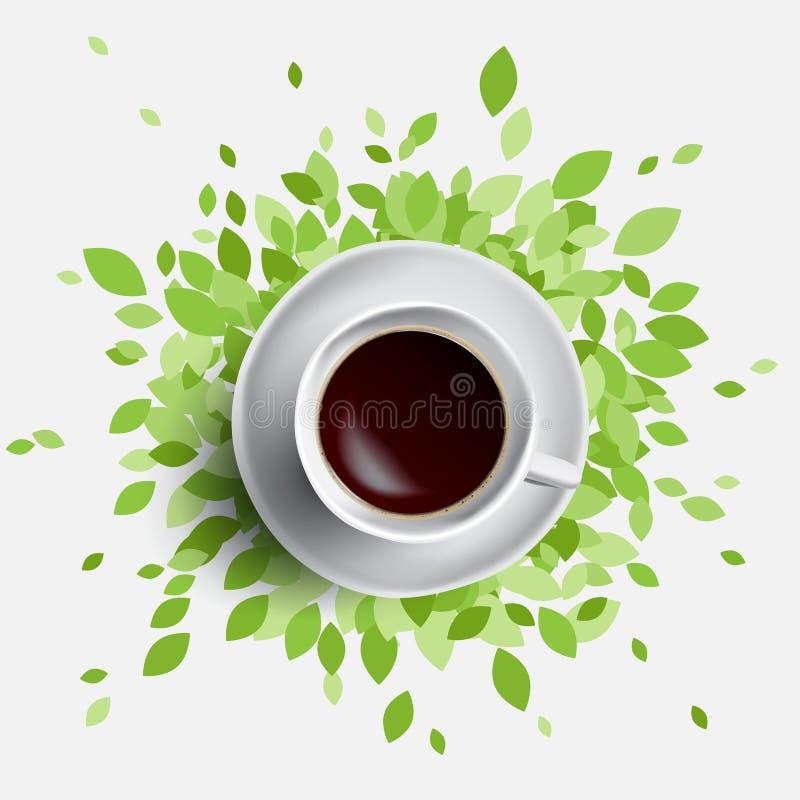 Καφές και πράσινη διανυσματική απεικόνιση φύλλων ελεύθερη απεικόνιση δικαιώματος