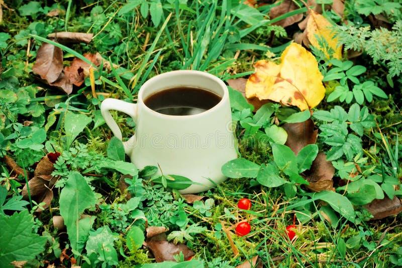 Καφές πρωινού στην περιοχή με τα φύλλα, τη χλόη και το δασικό υπόβαθρο στοκ εικόνα