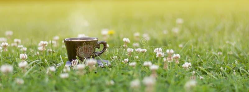 Καφές στη χλόη στη φύση στοκ φωτογραφία με δικαίωμα ελεύθερης χρήσης
